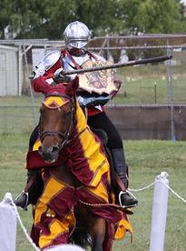 Australian Stock Horses Aromist Charisma