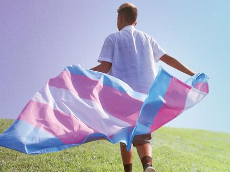 TransHood - Trajetórias de Jovens Trans