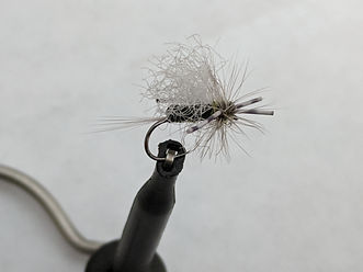 BWO Foam Fly.jpg