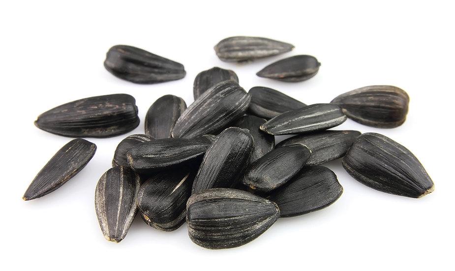 Raw sunflower seeds black