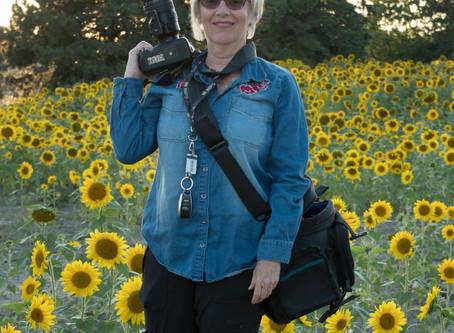Meet the Artist: Nettie Seip