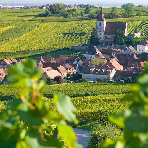 hunawihr-village-vignobles-alsace.jpg
