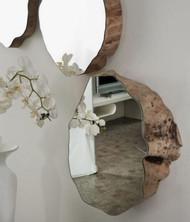 espelho_tronco_madeira1.JPG