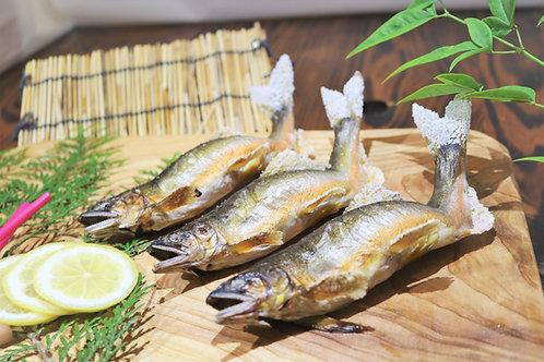 天然鮎塩焼き(1匹)
