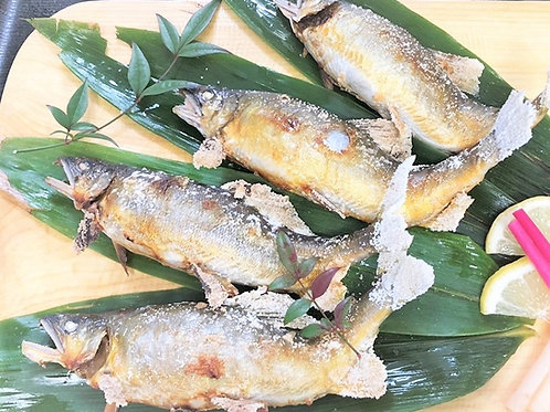 天然鮎子持ち塩焼き(1匹)