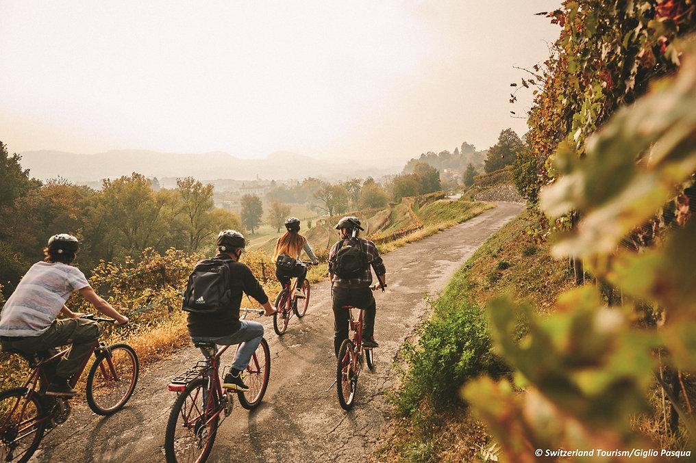 bike 2 compressa.jpg