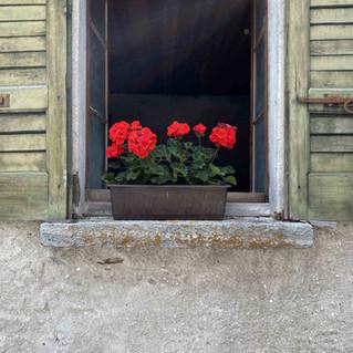 200724 Cittadella web-59.jpg