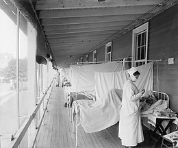 Global Health Crisis: 1918 or 2019? The flaw in our desires.