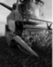 farmerflyer-english-2.jpg