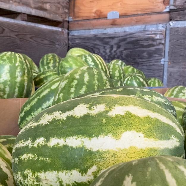 Pick a Ripe Watermelon