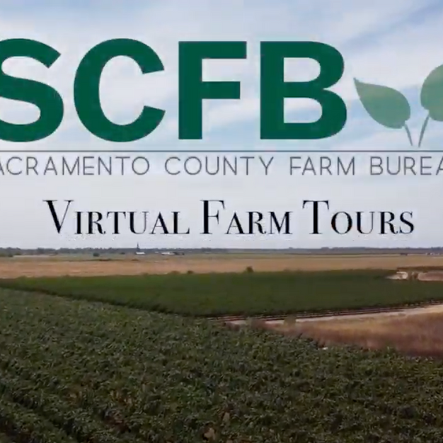 Virtual Farm Tours Teaser