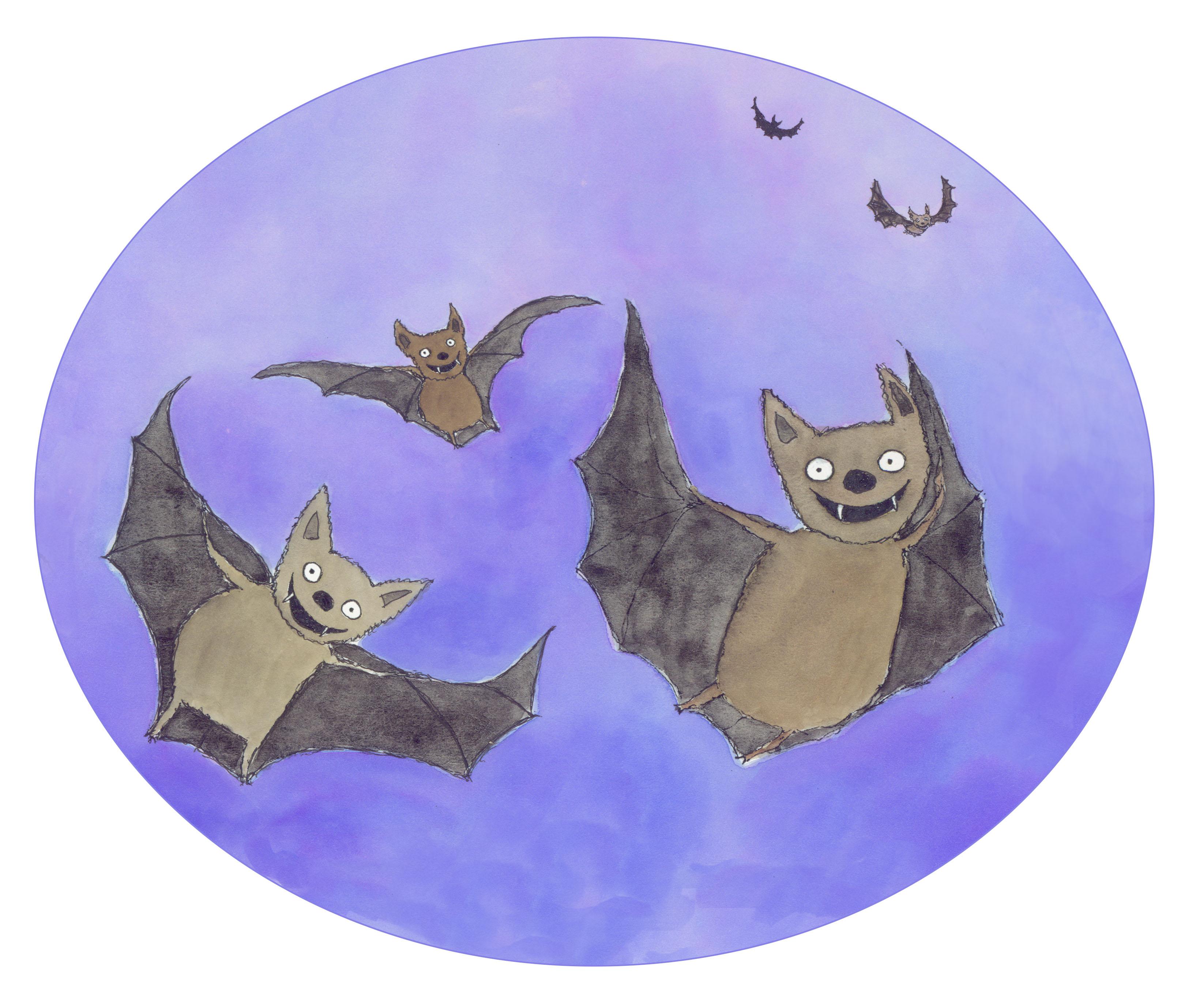"""Rattlebone Rock"" bats"