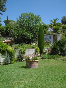 Vue jardin et serre