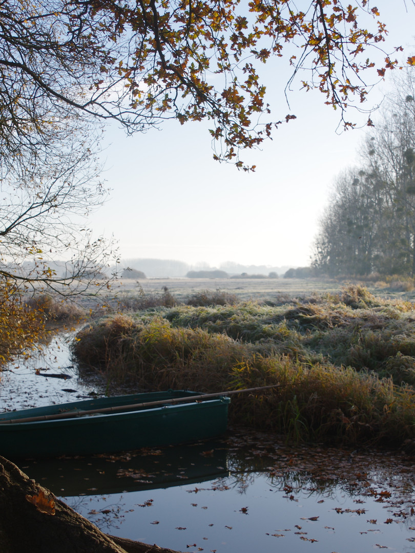 Le marais de Goulaine un matin d'hiver