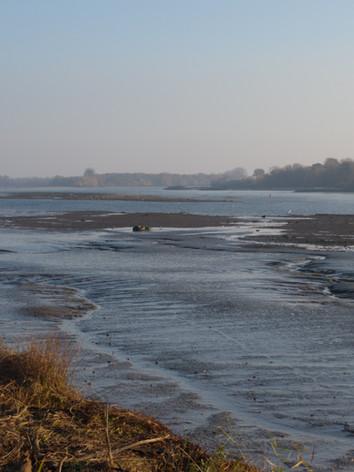 La Loire à marée basse