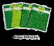 Bridge%20Sibling%20set%202021_edited.png