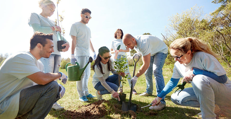 Trees & Research_team planting.jpeg