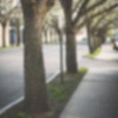 pavement-1839472_1920_edited.jpg