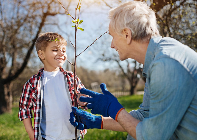 Boy & Grandfather looking at tree.jpeg