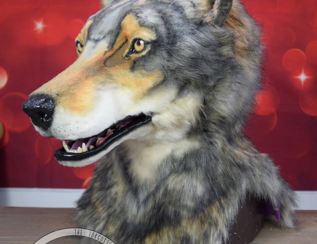Grey Wolf 2020