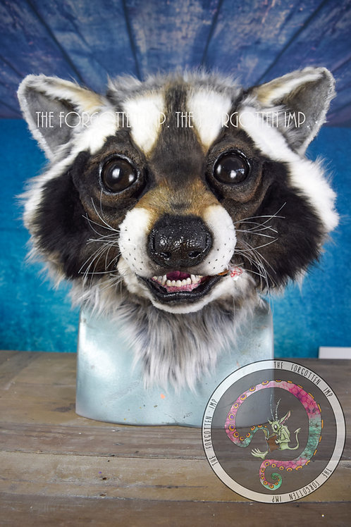 Realistic Raccoon Head Moving Jaw