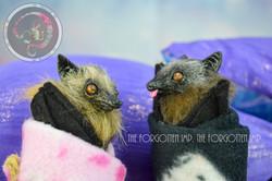 Baby Fruit Bat Wraps