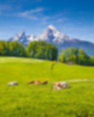 bigstock-Idyllic-Summer-Landscape-In-Th-
