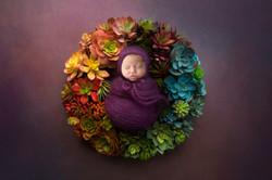 FloralWreath