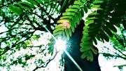 guidance pour m'aider à traverser des moments difficiles rey générez vous éveil et développement de conscience