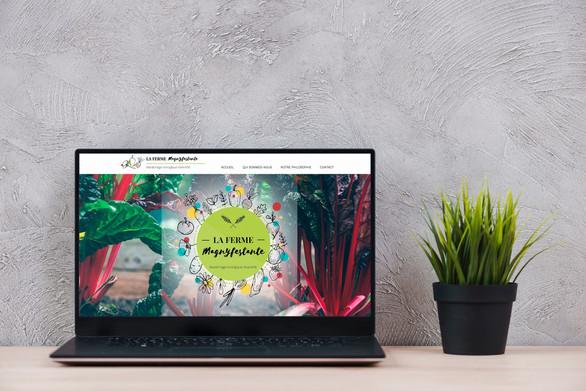 Site Internet vitrine La Ferme Magnyfestante, maraîchage biologique diversifié à Le Magny (5km de la Châtre)