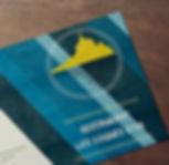 carte coque d'or mockup.jpg
