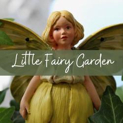 Little Fairy Garden