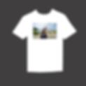 online store shirt.png