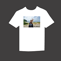 online store shirt.png
