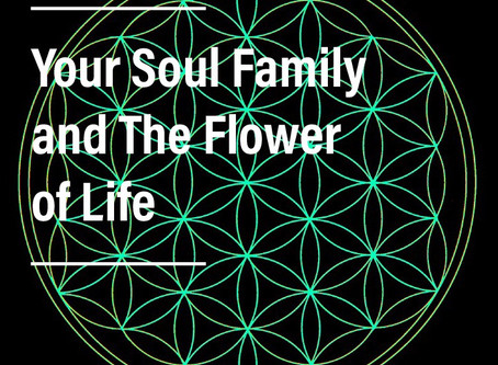 Your Soul Family and the Flower of Life