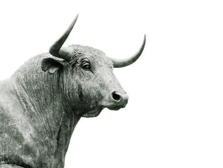 An 8-year Bull Market