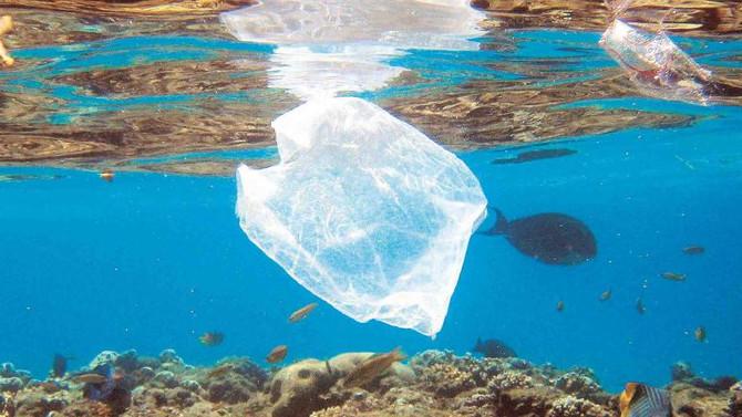 Retiran la medida que derogaría ley que prohíbe uso de bolsas plásticas