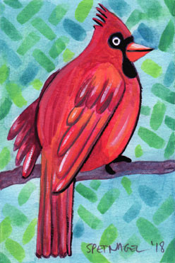 Allen-Spetnagel_cardinal.jpg