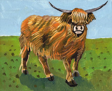 Allen-Spetnagel_highland-cow2.jpg