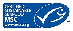 msc logo link.jpg