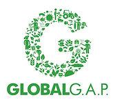 global gap logo link.jpg