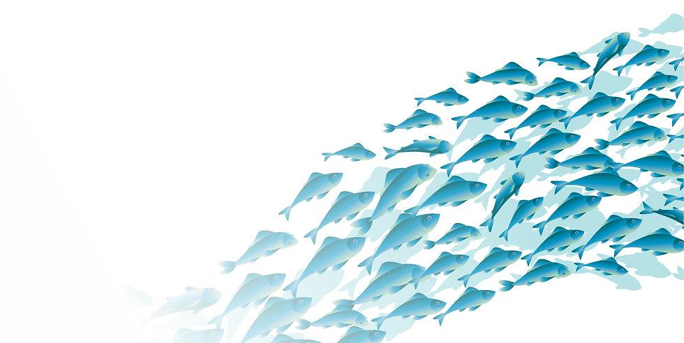 blue fish Sub.jpg
