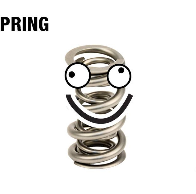 Comp_Spring.jpg