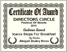 Audience Award cert.png