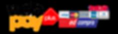 logo-webpay-plus-3-copy.png