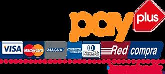 logo-footer-webpay.png