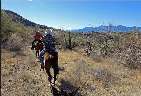 horseback riding in loreto, loreto horseback riding tours, loreto