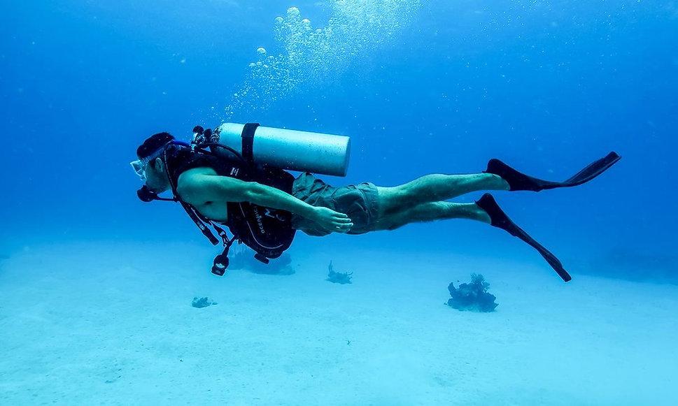 Loreto, scuba, diving, tours, companies, costs