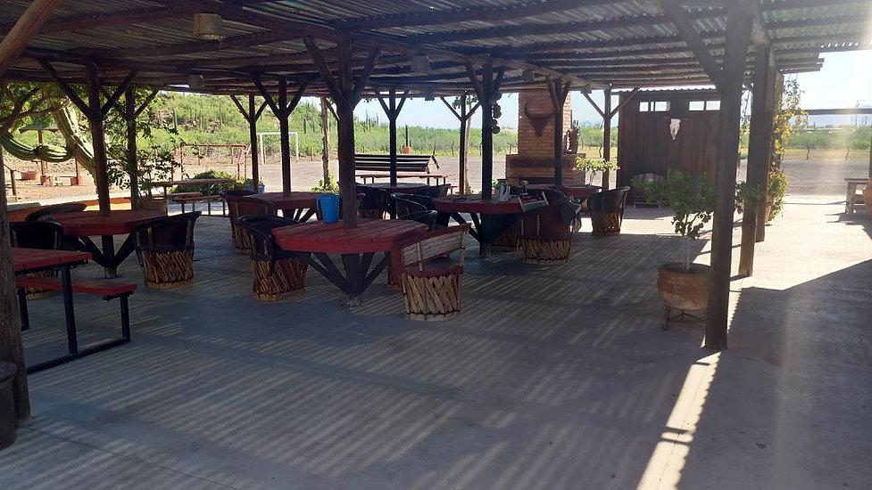 Del Barracho Saloon, Outdoor seating, Loreto, Nopolo, Restaurant, Bar