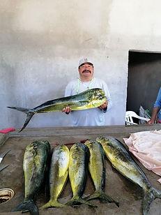 Loreto Fishing Charters, fishing loreto